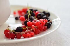 DSC_1398 (Milena Z) Tags:        buongiorno buonadomenica domenica vacanza estate colazione caff coffee ribes tazza piattino dolcevita  vladikavkaz colore color rosso nero red