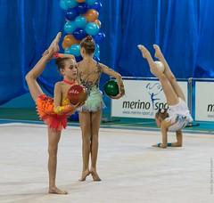 20141115-_D8H1237 (ilvic) Tags: gymnastics