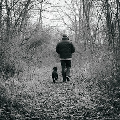 """MJ and Me"" (D A Baker) Tags: park county bw black dan nature forest self puppy woods lab labrador baker allen 1st fort walk daniel wayne trails first indiana hike trail da fujifilm pup fortwayne danielbaker danielabaker x100s"