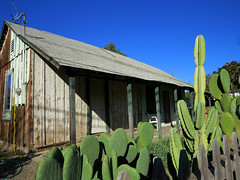 """""""Be it ever so humble, there's no place like home."""" (Bennilover) Tags: cactus house home wire energy peeling paint power cottage creative electricity saving humble sanjuancapistrano hookups"""