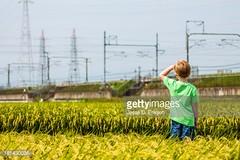 risaie-fotografia-orizzontale-bambino-caucasino (quintaainveruno) Tags: fotografia bambino risaie orizzontale caucasico