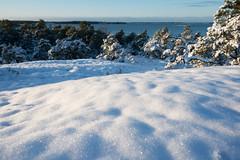 Winter in archipelago (OCS82) Tags: winter sea nature suomi finland nikon talvi meri archipelago luonto kustavi d600 saaristo