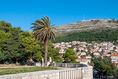 Dubrovnik - bura bora (fjakone) Tags: sun day wind north croatia clear chilly dubrovnik bora hrvatska bura dubrovačkoneretvanskažupanija dubrovačkoneretvanskažupanij