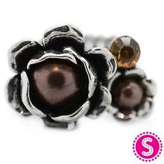 291_ring-brownkit1sept-box05