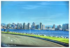 Road tripping the city (Olivia Heredia) Tags: california winter usa naturaleza nature us unitedstates sandiego socal invierno hdr highdynamicrange tonemapped tonemapping 1exp oliviaheredia oliviaherediaotero