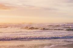 (transviralist) Tags: ocean sunset sea sky color beach nature clouds oregon outdoors evening coast waves