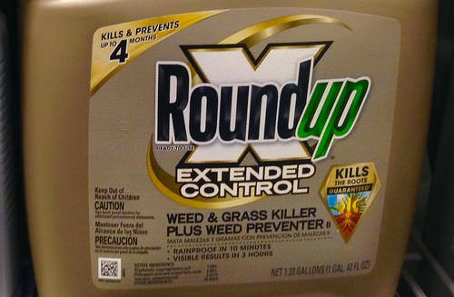 Roundup, From FlickrPhotos