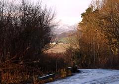 DSCF6890z (forget-me-not5275) Tags: snow scotland angus kirriemuir stanninstone
