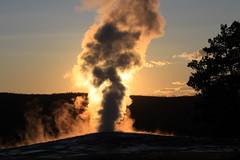The Fiery Eruption- Old Faithful (bbosica20) Tags: yellowstone geyser oldfaithfull absolutelystunningscapes