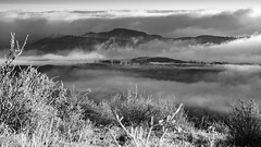 (LuminousWest) Tags: winter bw white foothills mountain black west monochrome fog landscape colorado frost sigma dp co luminous merrill foveon dp3 x3f dp3m luminouswest sdim1882bw