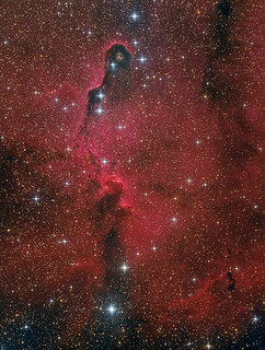 IC 1396A - Elephant's Trunk nebula (Elefantenrüsselnebel)