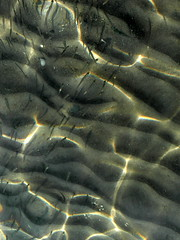 fish nursery school (kexi) Tags: water sea mediterranean fish small reflections translucent turkey samsung wb690 vertical may 2015 texture underwater instantfave