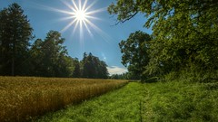 a small piece of home (Erich Hochstger) Tags: sun nature landscape austria sterreich outdoor natur landschaft sonne niedersterreich hdr sigma1020mm hausmening loweraustria imfreien sonnenstern canoneos70d