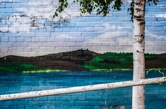 An Afternoon at the Lake (thewhitewolf72) Tags: wand mauer malerei see mggelsee friedrichshagen berlin blau stange baum diagonal weis stamm birke landschaft bild