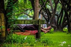 Sleep under the open sky (Farhan Alvee) Tags: farhansphotography bdphotography bangladesh bangladeshiphotography bangladesh2016 dhaka dhakacity dhaka2016 streetphotographybangladesh streetphotography street
