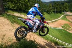 MaggioraPark - Alessandro Lupino (beppeverge) Tags: motocross bernardini cairoli monticelli lupino mx2 mxgp cervellin mxon philippaerts dp19 tc222 beppeverge maggiorapark magliazzurra