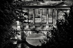 Hiding out in history (Andy J Newman) Tags: bath england unitedkingdom gb prior park palladian bridge blackwhitehdr blackandwhite nikon d7100