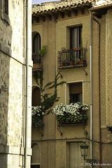 Alistando (Melophoto) Tags: segovia melophoto melvinramrez europa2016 espaa calles caminos callejuelas balcones luz sombra estrecho