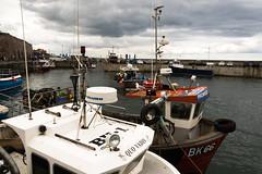 quo (pamelaadam) Tags: geolat55582652 geolon1651981 seahouses northumbria engerlandshire sea boat people lurkation july summer 2016 holiday2016 digital fotolog thebiggestgroup