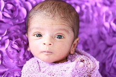 Varun (Vishal Singh Chauhan Photography) Tags: varun singh chauhan vishal canon 6d 100mm macro newborn infant eyes baby cute purple blue wrapped little