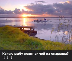 ? (P) Tags: park nuvole wasser travel sunset cityscape flower canon