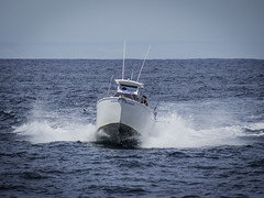 """On the high seas (""""Pam's Pet Pictures"""") Tags: tasmansea southpacificocean outsidesydneyharbour sea bigswell boat ocean photographedfromanotherboat"""