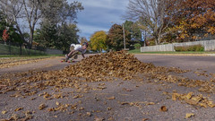 Fall problems (Codydownhill) Tags: skateboard skateboarding longboard longboarding fall leaves skating street downhill south dakota autumnleaves