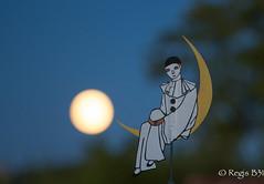 Au clair de la lune... (Rgis B 31) Tags: girouette lune