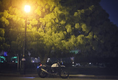 Late night shenanigans! (The Canon Fanboy) Tags: royalenfield himalayan delhi india asia bike greenery green light street architecture canon