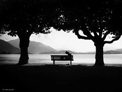 The last sunny day (Ren Mollet) Tags: zug renmollet street streetphotography lake sunny silhouette sitting bench woman lakefront trees promenade zugersee zuiko penf strassenfotografie