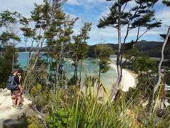 Abel Tasman National Park (boemlau) Tags: newzealand new zealand nieuwzeeland nieuw zeeland 2014 abel tasman national park abeltasman abeltasmannationalpark viewpoint beach strand sea zee forest bos