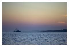 Nobska Light, Woods Hole, Falmouth, Cape Cod (danny wild) Tags: capecod massachusetts newengland sunset lighthouse autumn ocean atlantic nobska light