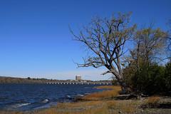 The Portage Bridge viewed from Westboro (Ottawa), Ontario (Ullysses) Tags: hull gatineau qubec autumn automne ottawariver riviredesoutaouais portagebridge westboro
