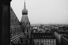 Stephansdom Tower (Halibel14) Tags: vienna wien christmas city travel blackandwhite bw tower fog skyline pen lumix austria holidays foggy olympus panasonic adobe stephansdom lightroom 1442mm epl1