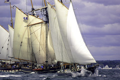 Stealing Wind (joegeraci364) Tags: ocean new wood sea england cloud seascape heritage nature water beauty weather festival race landscape outdoors boat marine ship action yacht outdoor antique connecticut craft vessel atlantic maritime boating sail mast nautical brilliant amistad mystic whaler