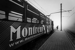 Train III (dbx300) Tags: dan de switzerland nikon suisse rocher naye montreux d700 berilloux