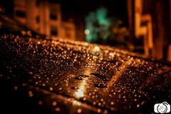 rain pluit (AbdellahZinir) Tags: rain maroc pluit temara