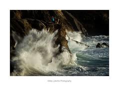 grandes marées à Quiberon-298 (gillouvannes56) Tags: