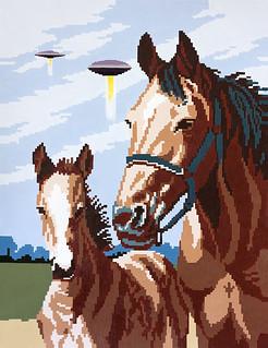 Paulova caballoypotro