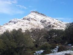 El Pichacho nevado en el Parque Natural de los Alcornocales (Cadiz-Turismo) Tags: naturaleza gibraltar tarifa barbate doana parquenatural alcornocales toruos elestrecho labrea bahiadecdiz parquenaturaldecdiz parquesnaturalescdiz