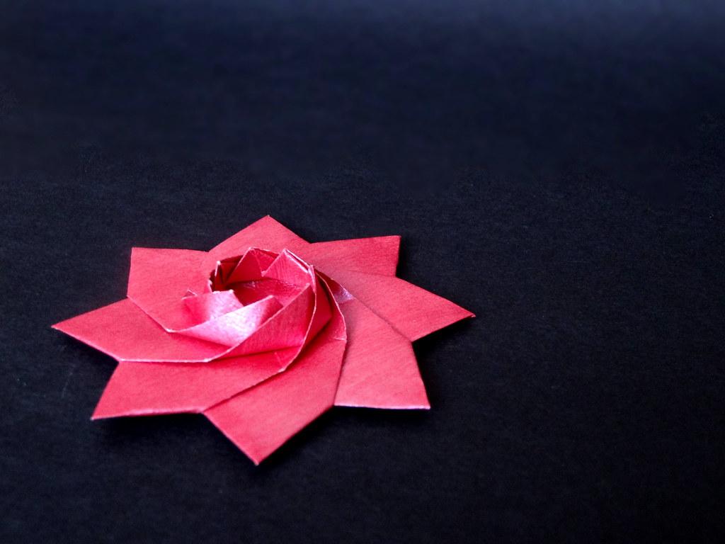 The worlds best photos of iris and origami flickr hive mind iris star dasa severova origamisunshine tags iris paper star origami paperfolding izmirmasajfo