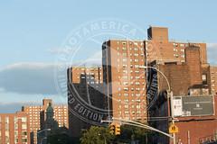 NEWYORK-323