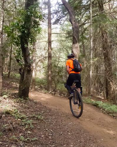Climbing UCONN trail
