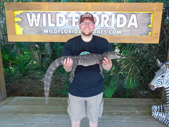"Holding an Alligator • <a style=""font-size:0.8em;"" href=""http://www.flickr.com/photos/92159645@N05/16233248151/"" target=""_blank"">View on Flickr</a>"