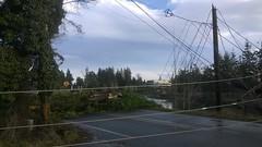 From Keyport area in Kitsap County, transmission poles damaged. (Puget Sound Energy) Tags: usa power unitedstates wind wash damage restoration pse outage pugetsoundenergy beastmode kitsapkeyport