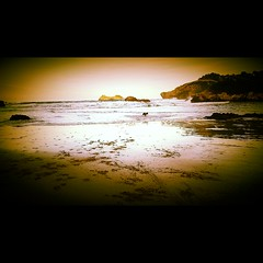 Celorio, Asturias. (IsaCaballero8) Tags: winter sea espaa dog mountain beach water mar spain sand agua rocks asturias playa highlights arena perro reflejo invierno filters montaa tigre rocas filtros