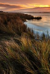 Ria de Aveiro, Sunrise (paulosilva3) Tags: sunrise canon de landscape lee filters ria aveiro waterscape 6d polariser lakescape riverscape