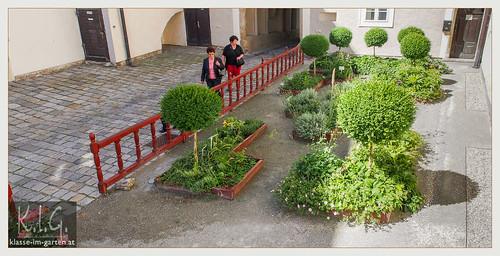 NOE, Stift Klosterneuburg Gaerten: Leopoldihof | 2014-06