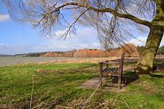 Windy View (AndyorDij) Tags: 2015 eyebrookreservoir reservoir lake trees tree snowdrops winter rutland england uk andrewdejardin