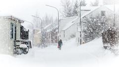 Snjókoma á Sigló (piparinn) Tags: winter snow iceland ísland febrúar snjór vetur snowfalls siglo siglufjörður norðurland tröllaskagi trolled fjallabyggð snjókoma canoneos70d hlíðavegur